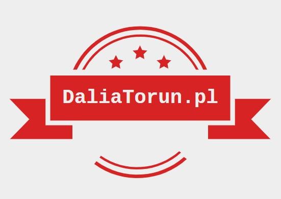 Dalia - Portal o diecie na masę / odchudzanie